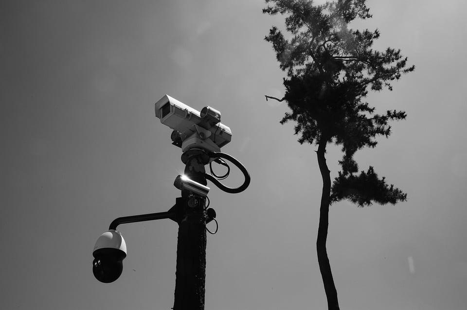 מצלמות אבטחה מוסלקות